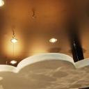 Acoustics ceiling
